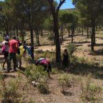 Internos de las cárceles de Ocaña participan en una limpieza de la Sierra de Madridejos
