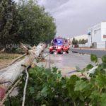 Unos 70 sucesos se registraron en la provincia de Toledo durante la tormenta