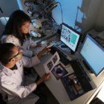 Hasta ocho millones de euros para investigación científica
