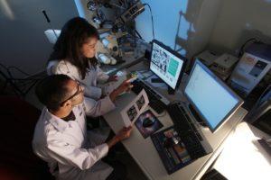 experimento investigación ciencia laboratorio