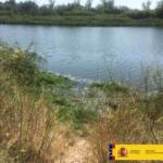 La Confederación Hidrográfica retira plantas de camalote en un tramo del río Tajo en Talavera de La Reina