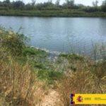 Partida urgente para retirar el camalote del río Tajo entre Talavera y el pantano de Azután
