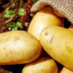 Algunos alimentos multiplican sus precios hasta un 600% del campo a la mesa