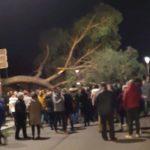 La borrasca 'Fabien' deja árboles caídos y recintos cerrados en la provincia de Toledo