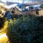 Desarticulan una organización internacional dedicada al narcotráfico con registros en Toledo y Guadalajara