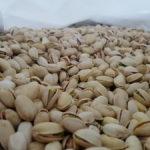 Nace Domo Pistachio: Villacañas y Manzanares se alían para comercializar este fruto seco