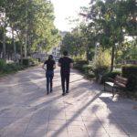 Cortes de tráfico y peatonalización, nuevas medidas en Toledo frente a la desescalada