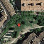 La intervención en el arbolado del parque de Bélgica de Toledo responde a criterios de seguridad