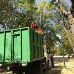 Talavera pone en marcha una poda preventiva en el arbolado de los Jardines del Prado
