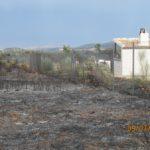Investigan a tres hombres que provocaron un incendio en un paraje de Madridejos con una barbacoa familiar