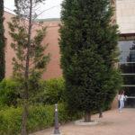 Más matriculados en la UCLM en Talavera e Ingeniería Informática recibe el doble de solicitudes de su oferta