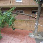 Policía Local y Bomberos atienden 30 incidencias en Toledo a causa de las fuertes rachas de viento