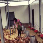 Mejorada, sede de un 'erasmus agrario' para que jóvenes agricultores conozcan la cría controlada de caracoles