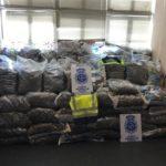 Diez detenidos en Yuncler tras intervenir 355 kilos de marihuana que iban a distribuir a Alemania