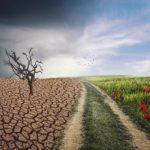 """Los efectos del calentamiento global """"pueden quedarse ahí para siempre"""""""