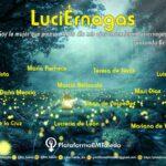 El 'Proyecto LuciÉrnagas' ilumina la historia recuperando a las mujeres y arrojando feminismo al callejero de Toledo