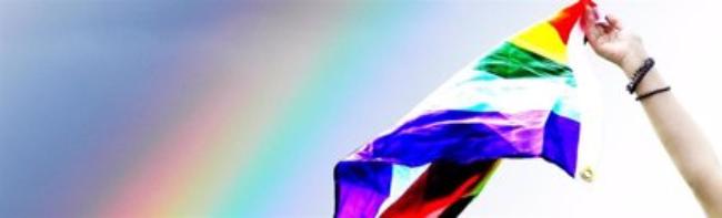 LGTBI bandera