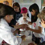 Abierto el plazo de inscripciones para la nueva edición del campamento de verano 'Educar en Igualdad'