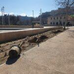 Plantan 177 árboles y 480 arbustos en diversos barrios de Toledo con especial atención a las zonas dañadas por 'Filomena'