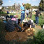 """Plantación colectiva en el Huertódromo del Polígono para ayudar a los polinizadores y dar """"color"""" al espacio abierto a la participación vecinal"""