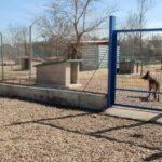Reforma integral del Centro de Acogida de Animales de Talavera para dotarlo con más casetas, comederos y bebederos