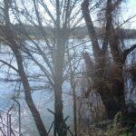 La Confederación del Tajo pone en marcha una estación de control en el Sistema de Calidad de las Aguas en Escalona