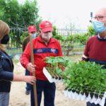 Los huertos urbanos de Torrijos continúan creciendo tras sumar 2.500 plantas