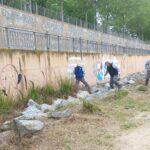 """Continúan """"a buen ritmo"""" los desbroces en la ribera del río para minimizar el impacto de los mosquitos en Talavera"""