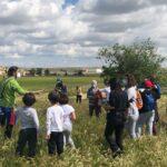 GALERÍA | Día de campo en la Cañada Real Segoviana de Torrijos