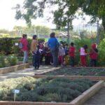 Los colegios toledanos contarán con huertos ecológicos desde el próximo curso escolar