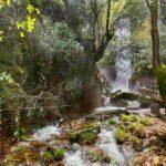 Disfruta la aventura y la naturaleza en Castilla-La Mancha: un destino para descubrir tu mundo interior