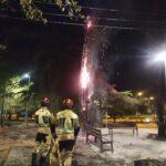 Incendian otro árbol más en el Polígono de Toledo pero siguen sin dar con los posibles responsables
