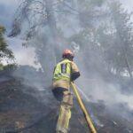 GALERÍA | Un incendio quema una gran cantidad de terreno del Parque de la Vega de Toledo