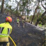 «Mi percepción es que en el incendio del parque de La Vega ha intervenido la mano de alguna persona»