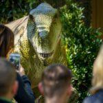 """Toledo: de ciudad de las tres culturas a """"un auténtico parque jurásico"""" con la llegada de Dinosaurs Tour"""