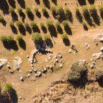 Los hallazgos del crómlech de Totanés, en un libro que quiere dar a conocer esta estructura megalítica de la Edad de Cobre